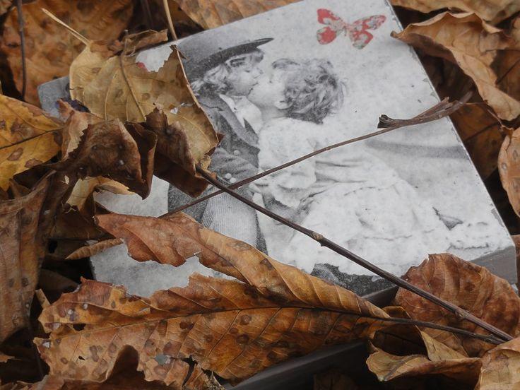 posypały się liście...