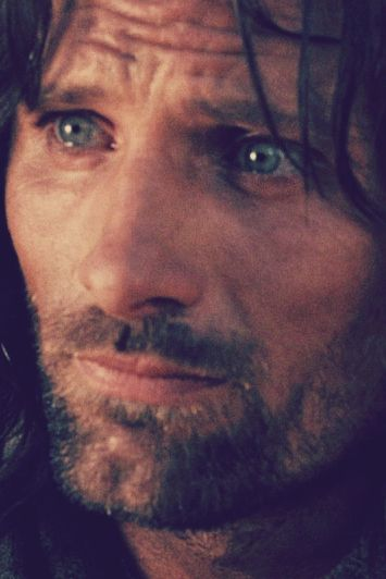 """""""I would have gone with you, into the very fires of Mordor."""""""
