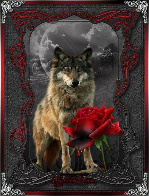 коле был картинки и анимация с волками стал политиком избрался