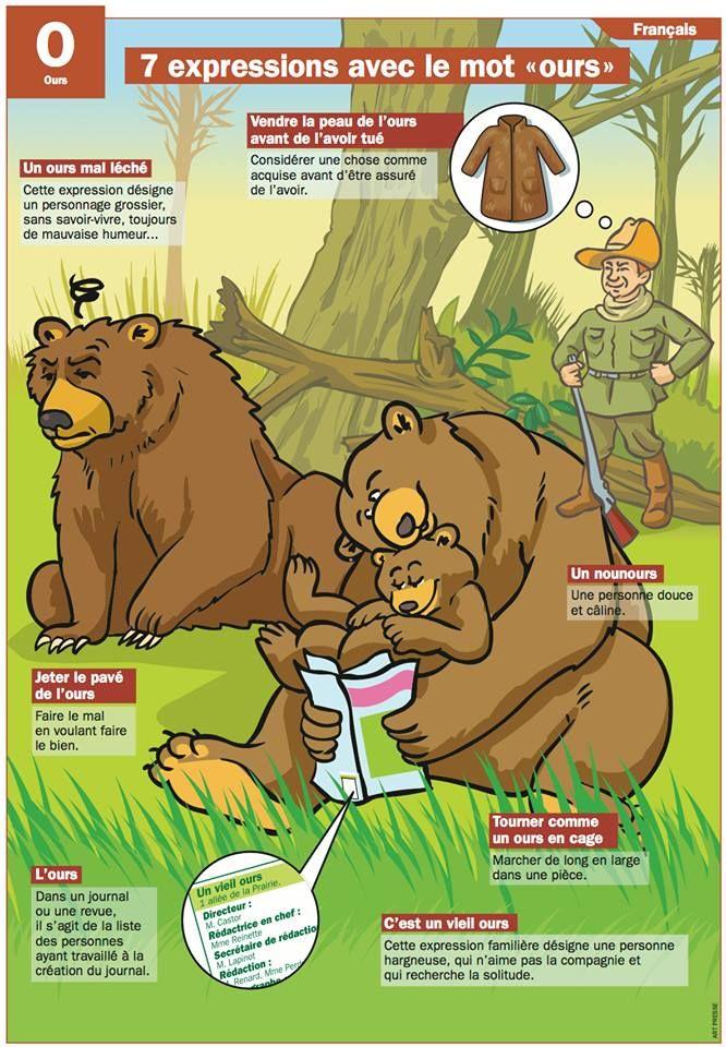expressions avec le mot 'ours'
