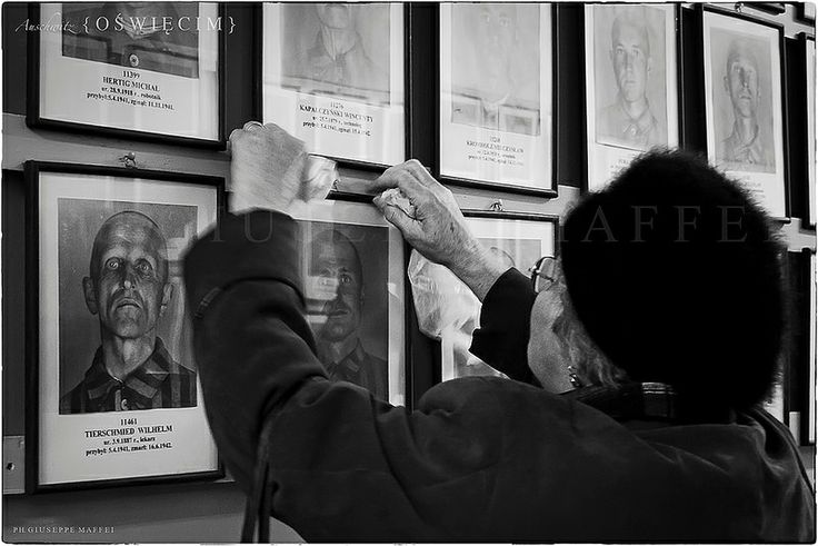 A personal moment captured. An older lady is placing a flower next to a photograph of an Auschwitz prisoner...