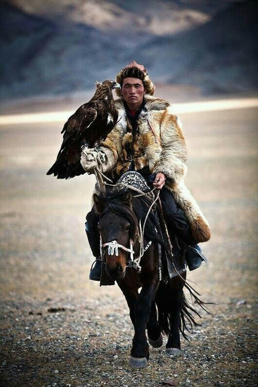 Hunting with eagles is a traditional form of falconry found throughout the Eurasiansteppe, practiced by Kazakh and Kyrgyz people in contemporary Kazakhstan and Kyrgyzstan, as well as diasporas in Bayan-Ölgii, Mongolia, and Xinjiang, China. Though these Turkic people are most famous for hunting with golden eagles, they have been known to train northern goshawks, peregrine falcons, saker falcons, and more.[1] (Wikipedia)