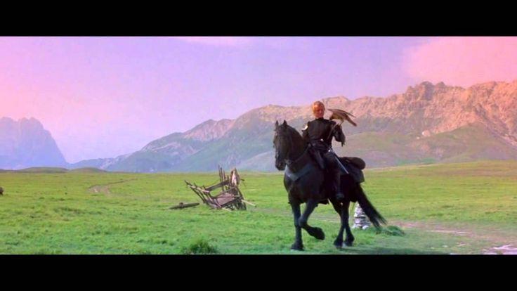 JESTŘÁBÍ ŽENA je americký film z roku 1985 režiséra Richarda Donnera.Zlodějíček Filip se na útěku ze středověkého vězení krutého biskupa setká se záhadným rytířem Navarrem a stane se jeho sluhou.Rytíř putuje krajem se svým jestřábem a Filip zjistí,že jsou spojeni strašlivou kletbou.Navarre s krásnou Isabeau se zamilovali,což rozlítilo biskupa natolik,že je oba proklel.Dívka se ve dne mění v jestřába a Navarre v noci ve vlka.Milenci se již nikdy nemají setkat v lidské podobě.