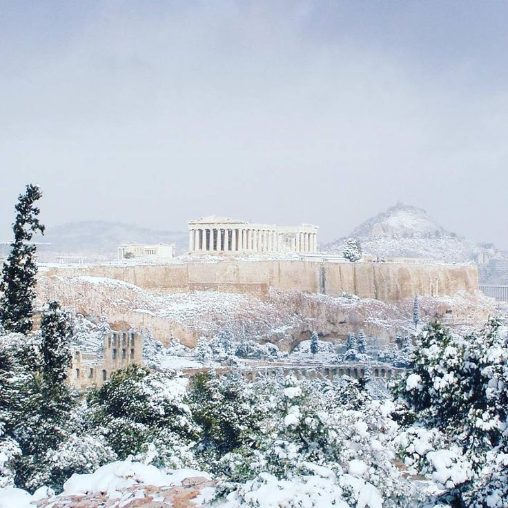 Athena in the snow-4