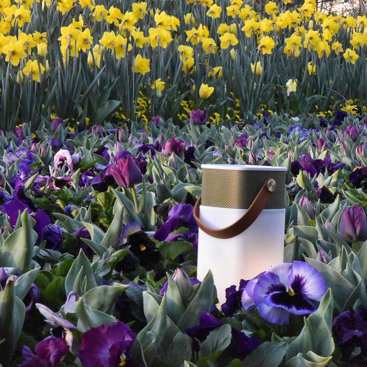 Kreafunk – aGlow a stylish wireless speaker from Kreafunk is an integration of a Bluetooth speaker, LED lamp and powerbank all fused in one elegant design. Stylishly aesthetic to behold, aGlow wireless speaker elegantly integrates the home, the garden and outdoor lifestyle into one.