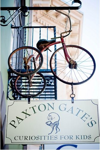 Shopper's Diary: Paxton Gate's Curiosities for Kids in SF: Remodelista