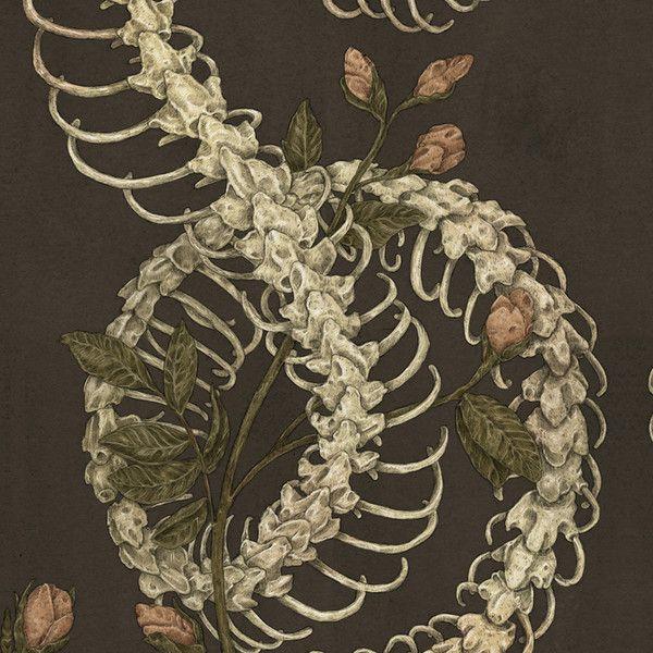 Snake Skeleton Leggings ($39) ❤ liked on Polyvore featuring pants, leggings, skeleton leggings, snake leggings, brown pants, snake pants and skeleton print leggings