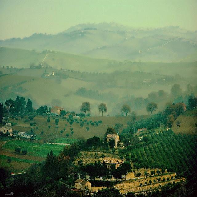 Le colline maceratesi immerse nella nebbia