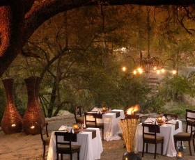 Visit the Sabi Sabi Private Game Reserve for a Luxury Safari Experience