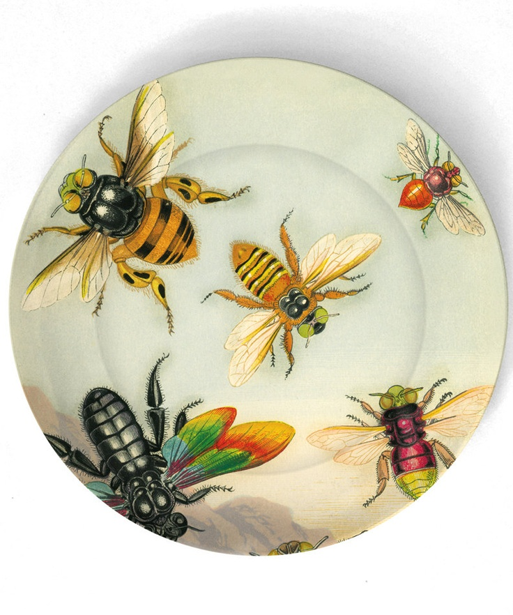 Bees Antique artwork of insects II 10 inch by TheMadPlatters...on melamine.