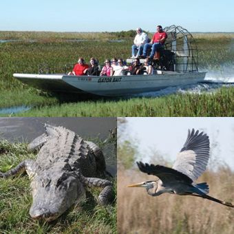 Air Boat Ride in the Florida Everglades.  DONE- Marco Island, FL.    Excited to go when we visit out parents in a few months!!!!