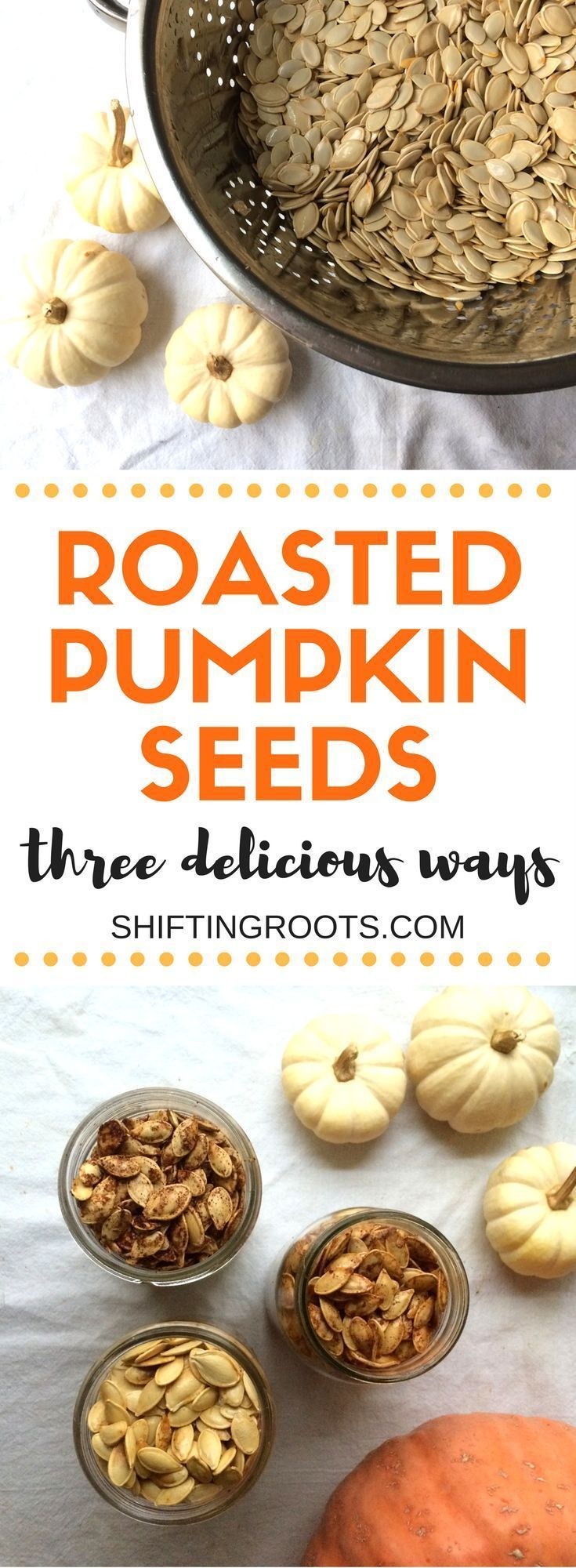 Making pumpkin seeds is easier than you think! Delicious, nutritious, and perfect for your next snack. Roast them or bake them and sprinkle with salt, sugar, cinnamon and a variety of other spices. #pumpkin #pumpkin seeds #healthysnacks #pumpkinrecipes via @shifting_roots