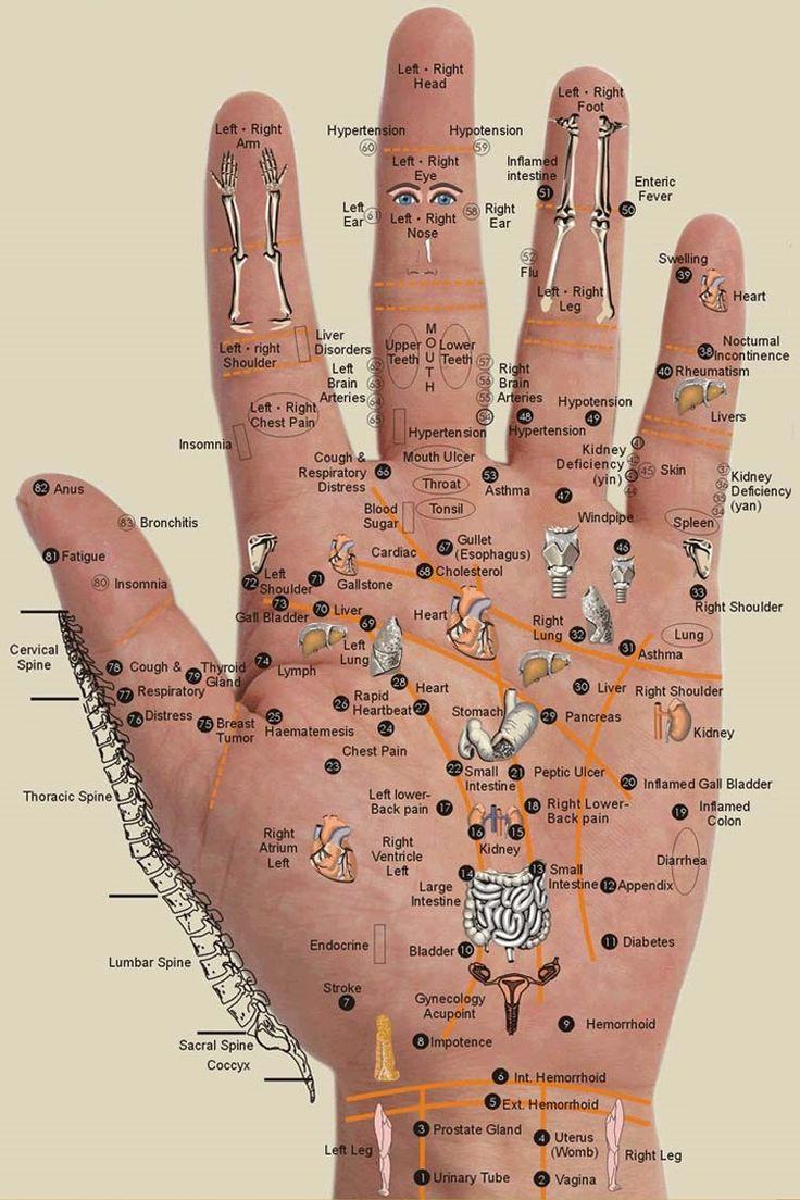 Hand Acupuncture Points #acupuncture #jostsauer #rt #massage #health #wellness #acupressure