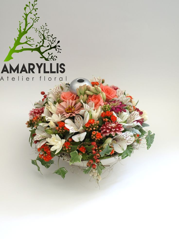 amaryllis#flori#eveniment