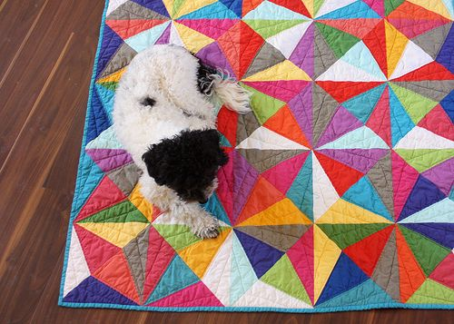 Crackle Quilt with Modern Solids 2 (and dog.)