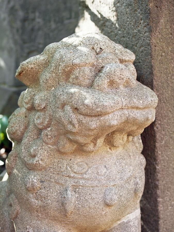 狛犬(江島杉山神社)年代不詳