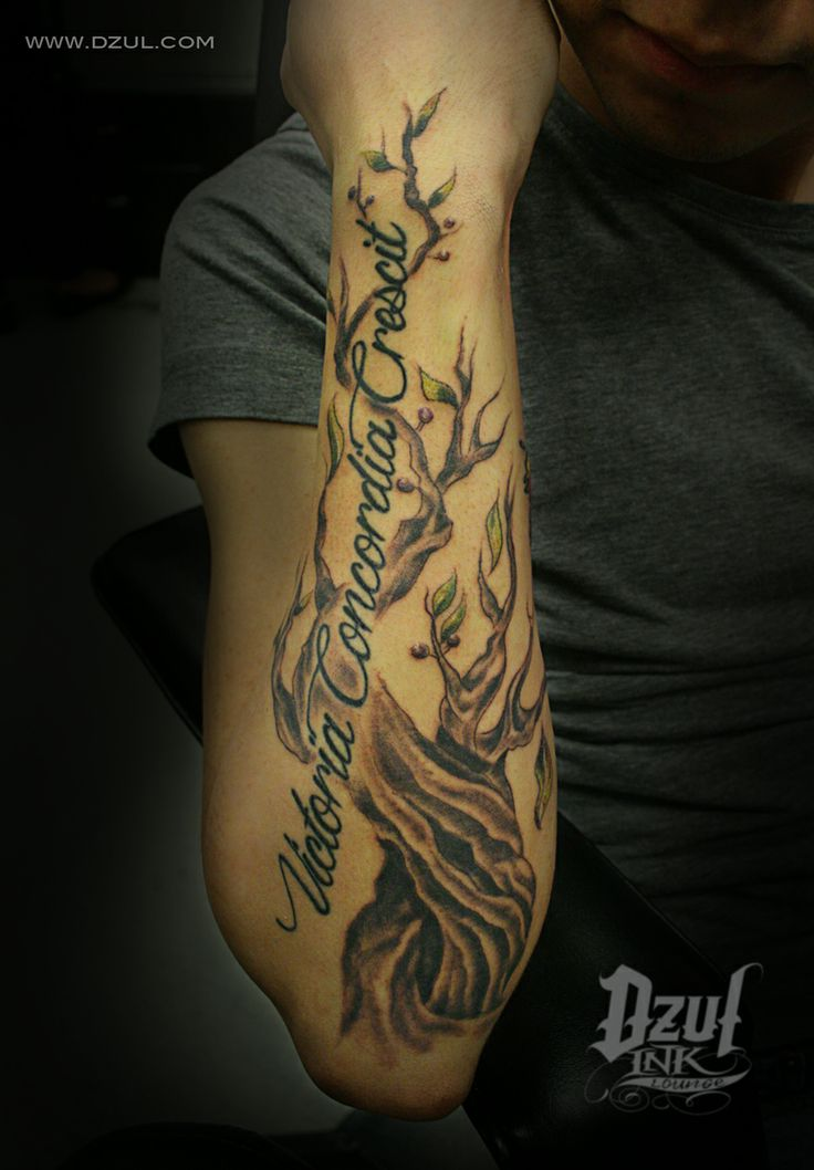 Olive branch color arm tattoo with quote and little olives ...