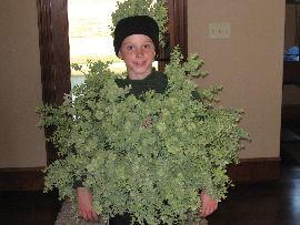 Halloween Costume Ideas  Kids