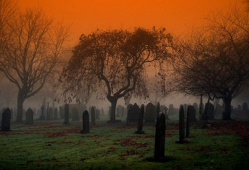 morbid obsession with cemeteriesOrange, The Roads, Sunsets, Weeping Willow, Beautiful, Graveyards, Black, Old Cemetery, Halloween