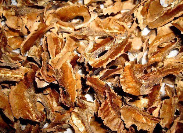 Поразительно, но, если верить народной медицине, с помощью перегородок грецких орехов можно справиться с целым рядом конкретных заболеваний.