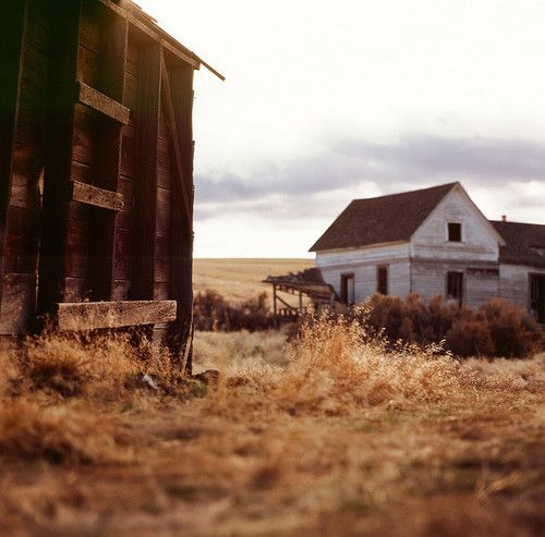 White Elephant Ranch In Condon, OR