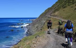 cyclists on the Rimutaka cycle trail