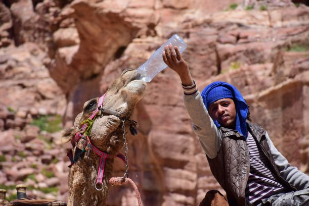 The Bedouins of Petra, Jordan – the Stories Behind the Faces | Travelin' Kait