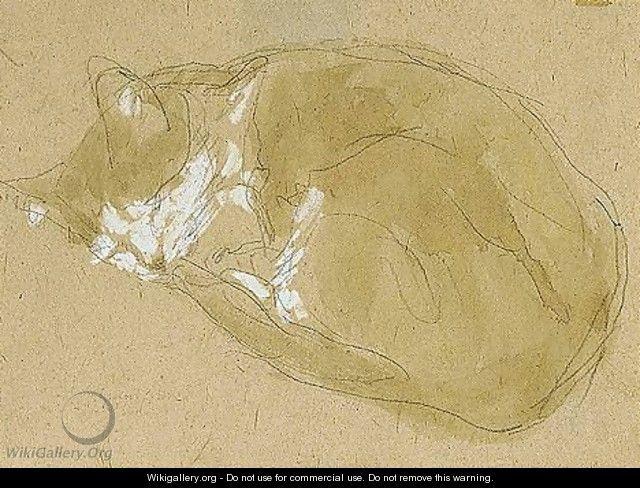 Cat Sleeping - Gwen John