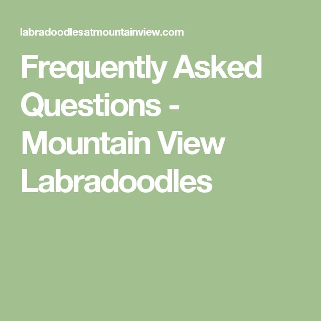 Frequently Asked Questions - Mountain View Labradoodles