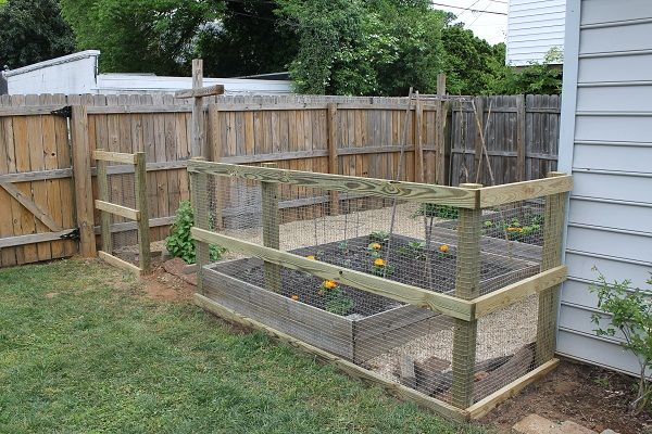 Simple Garden Fence Diy. I Want My Garden And My Dogs, But