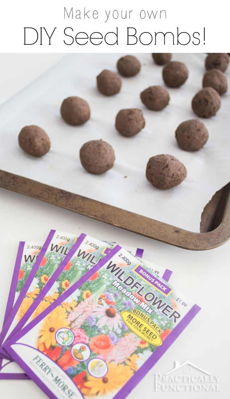 Learn how to make your own DIY wildflower seed bombs! It's a fun and messy project, and a great way to garden with your kids; this step by step tutorial shows you how!