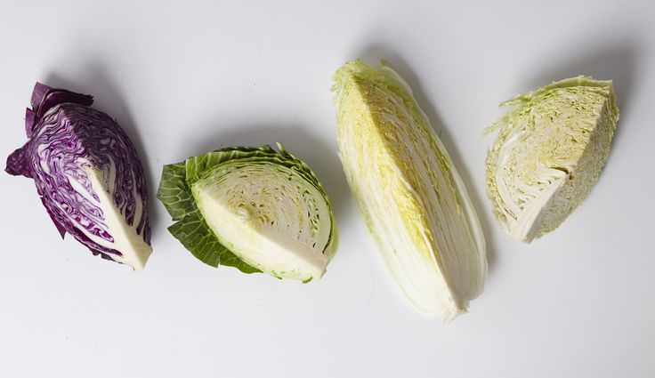 Types of cabbage - How to cook them - Assorted Cabbage Recipes