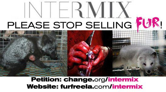 Intermix has every type of slaughtered and skinned animal for sale: Fox fur, rabbit fur, raccoon fur, and even coyote fur. Not only is fur disgustingly cruel, but it is totally unnecessary when there are so many fabulous faux fur options available. PLEASE SIGN OUR PETITION June 2026  #animalrightsbrigade