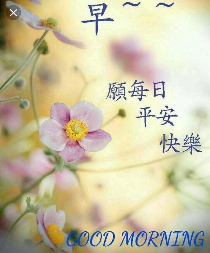 Morning/ 早安/午安 Image By MK