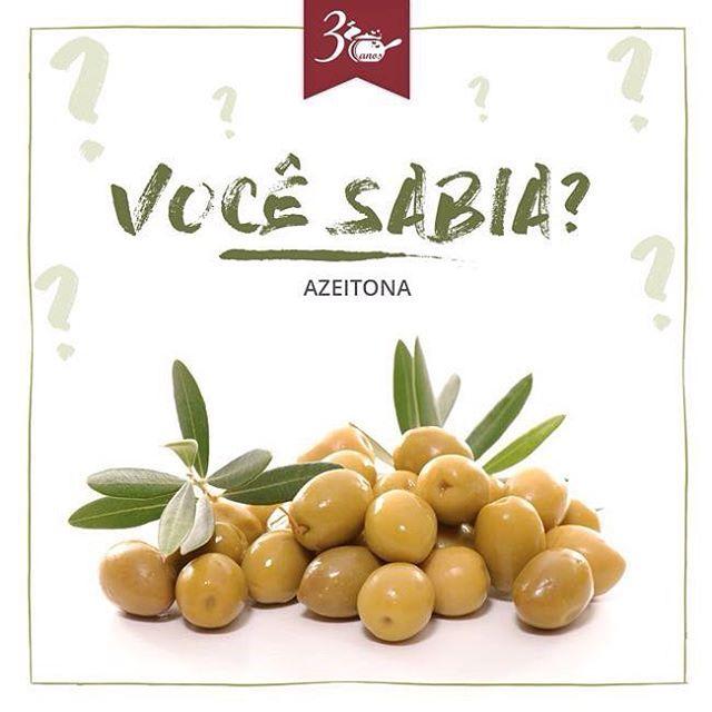Fruto das oliveiras, as azeitonas têm a sua origem no mediterrâneo e chegaram ao Brasil com a colonização Portuguesa. Possui antioxidantes que previnem doenças cardíacas e é fonte de gordura monoinsaturada, que promove o aumento do colesterol bom (HDL) e diminuição do colesterol ruim (LDL). Além disso, possui minerais como o potássio, que ajuda no combate ao envelhecimento da pele e também melhora o funcionamento dos rins e do aparelho digestivo. Gostou? Então peça a nossa deliciosa salada…