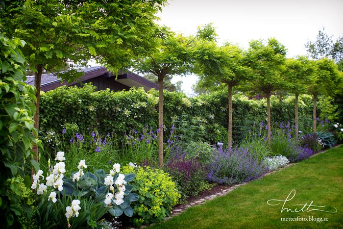 Beautiful garden by Sams Gardens Green © Mette Ottosson Photography