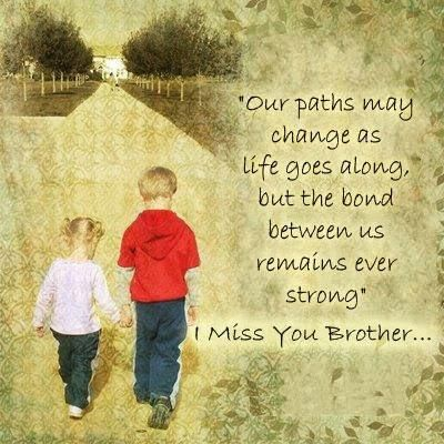 Our Path May Change as Life   Quotes about Your Brother