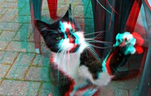 http://3dprinteray.com/my-name-is-little-cat/