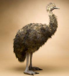 """Emu Realistic Stuffed Animal - 72"""" Lifesize Hansa Large Stuffed Emu"""