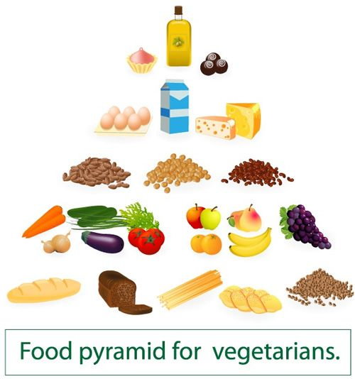 Are you a vegetarian looking for the perfect diet plan to help you on your weight loss journey? A vegetarian diet has proven to be effective for weight loss. It is also associated with reduced risks of several ailments like cardiovascular disease, high blood pressure, cholesterol and diabetes. There has been a rapid increase in …