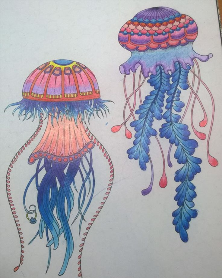 Anatomy Coloring Book Whsmith : Best 87 johanna basford : jellyfish u2022¨*u2022.¸¸♥ images on pinterest