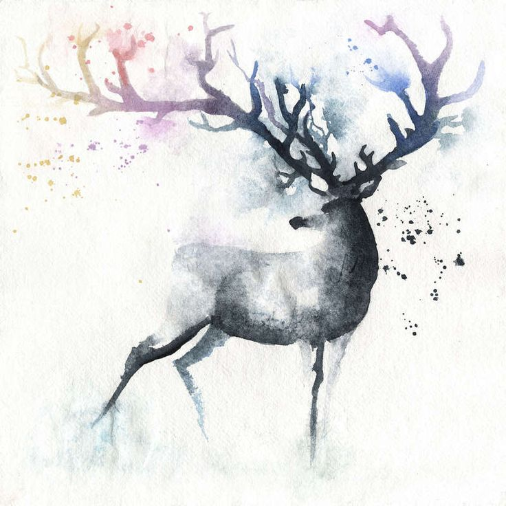 Large_blule-daily-155