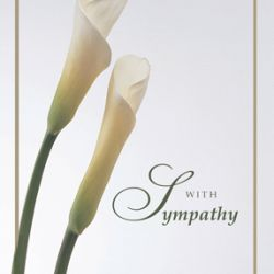 This beautifully written article by Susan Kennedy provides wonderful tips for writing sympathy notes that will comfort their recipients.  http://www.squidoo.com/write-sympathy-note
