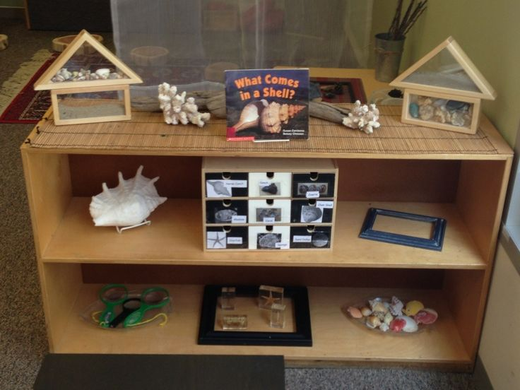 Science Area for Toddlers...love the blocks with clear sides that feature sand and shells.