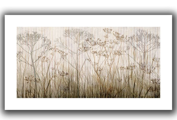 Art Wall 'Wildflowers Ivory' by Cora Niele Canvas Poster & Reviews | Wayfair
