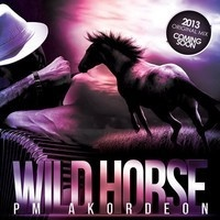 Wild Horse (Original Mix) Preview - PM AKORDEON by PM AKORDEON on SoundCloud