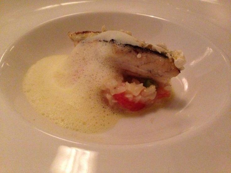 Tomaten risotto met gebakken zeebaars en een schuim van langoustine bij restaurant de Artisjok