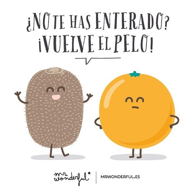 https://instagram.com/p/iljBnerBWU/?modal=true Mr Wonderful http://www.gorditosenlucha.com/