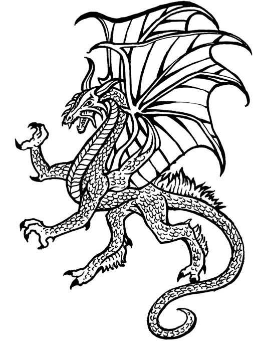 559 best Dragons to Color images on Pinterest  Coloring books