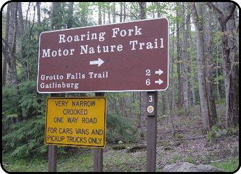 Roaring Fork Motor Nature Trail Inthe Smoky Mountains